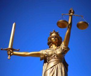 Профессионал-представитель в суде
